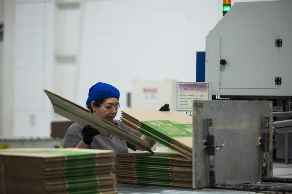 Bio Pappel inicia operaciones en su sexta sede industrial en Estados Unidos